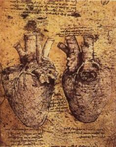 """Leonardo da Vinci """"Corazón"""" en Cuaderno de apuntes1510"""